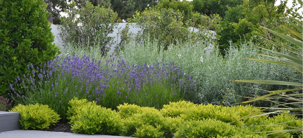un jardin design de paysagiste concarneau henri mignon paysagiste. Black Bedroom Furniture Sets. Home Design Ideas